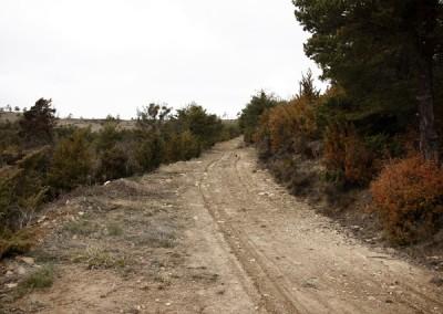 Una pista genial para recorrer en bicicleta de montaña