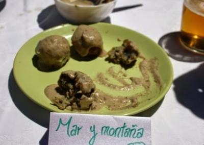 Jornadas micológicas primaverales de Borau 2014