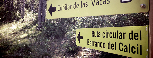 RUTA CIRCULAR AL BARRANCO DEL CALCIL