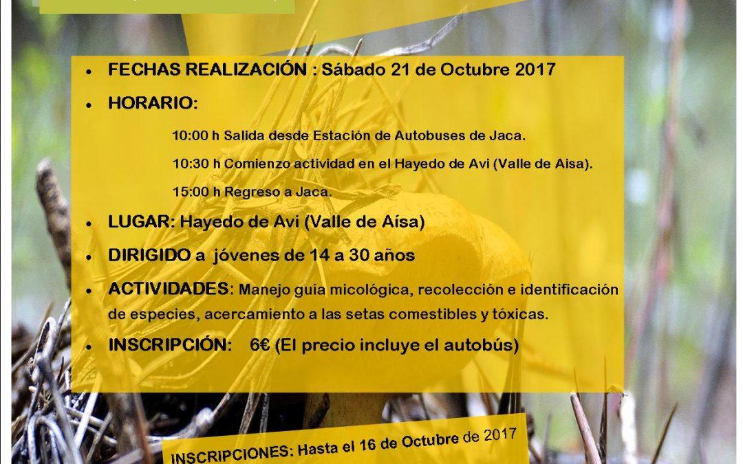 21 de Octubre SALIDA DE INICIACIÓN A LA MICOLOGÍA EN LA COMARCA DE LA JACETANIA